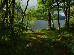 English Lakeland Walks - Self-Guided Lake District Walks